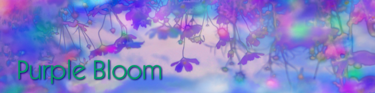 Purple Bloom | Official Website